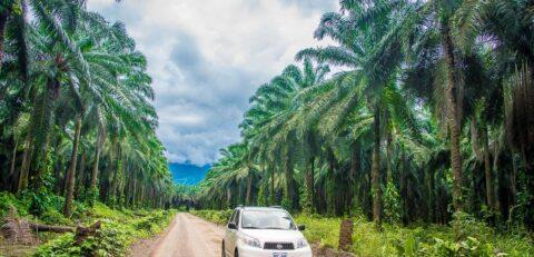 Autotour-Costa-Rica